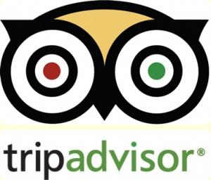 tripadvisor-logo-transparent-tripadvisor